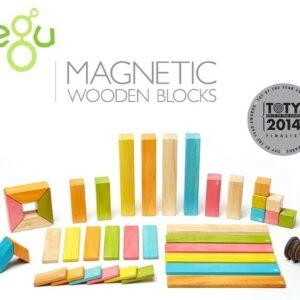 Bloques de madera magnéticos Tegu
